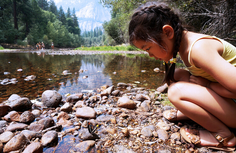 ヨセミテ国立公園内は様々なレベルに合わせたトレイル(散策ルート)が用意されており、お子様連れでもお楽しみいただけます。