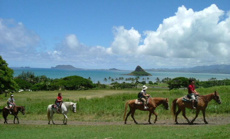 写真提供: <a href='https://www.kualoa.jp/' target='_blank'>Kualoa Ranch</a>