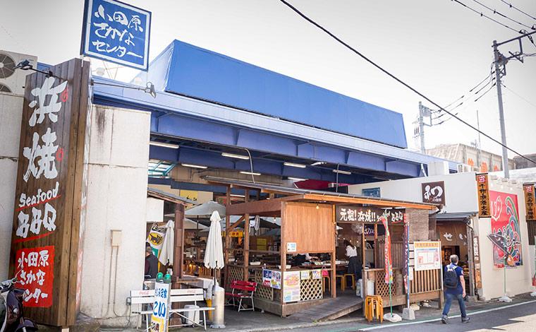 ザ・ベイフォレスト小田原・バイ・ヒルトン・クラブから車で約10分の小田原さかなセンター。海産物の加工品や地場などが豊富にそろう。