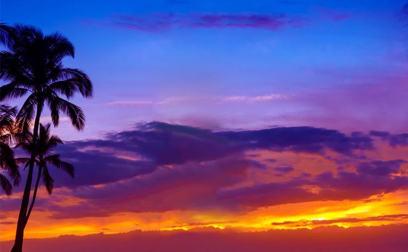 心癒やすマウイ島3日間の旅