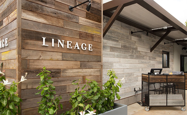 写真提供:Lineage