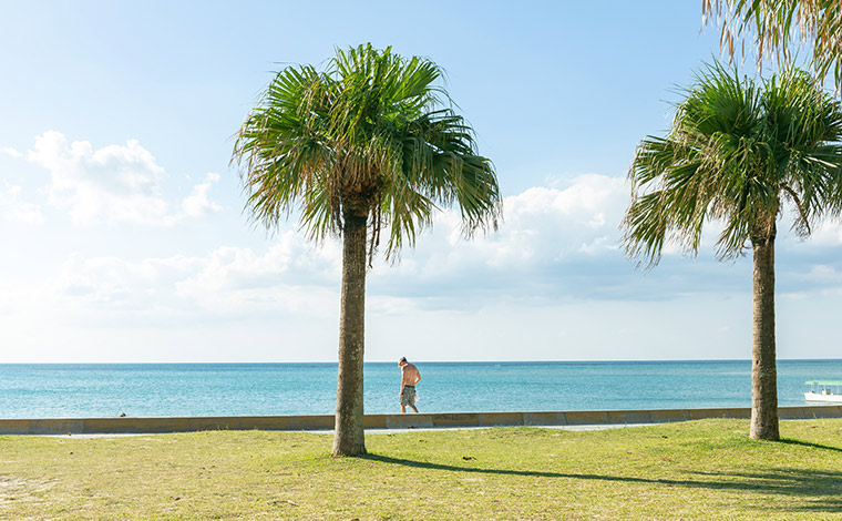 外国人客も多く、異国情緒が味わえるアラハビーチ。