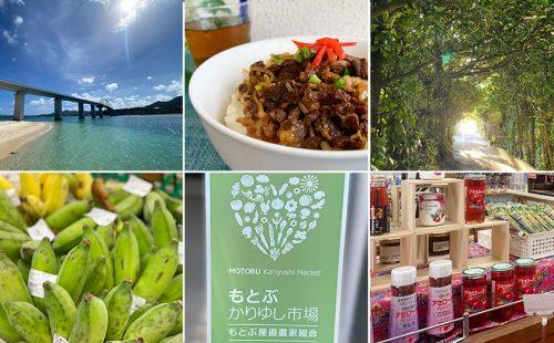 【2021年沖縄土産】沖縄・本部町&瀬底島のおすすめ特産品ギフトを贈ろう!