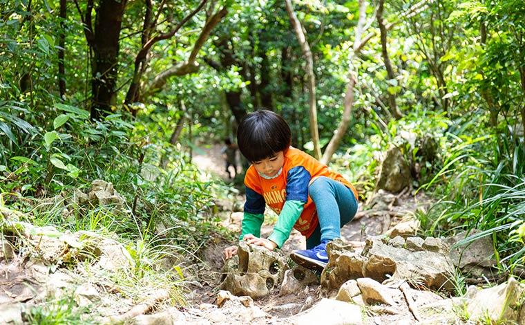 写真提供:Sesoko Masayuki