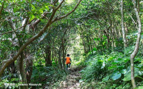 沖縄定番観光地から絶景&自然満喫の旅。 子供と一緒が楽しい現地ライター厳選スポット